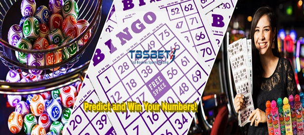 What Is the Difference between Bingo and Keno?